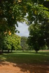 5 Hyde Park ©TripAdvisor