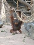 Zoo Hamburg ©TripAdvisor