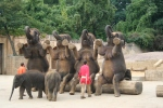 Zoo Hannover ©TripAdvisor