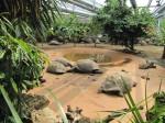 Zoo München ©TripAdvisor