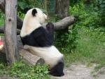 Zoo Wien ©TripAdvisor
