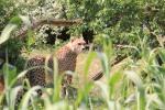 Zoo Basel ©TripAdvisor