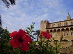 1. Mallorca ©TripAdvisor