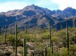 Tuscon, Arizona ©TripAdvisor