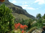 Gran Canaria ©TripAdvisor